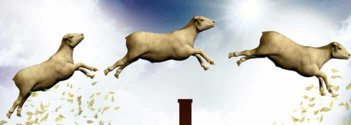 Counting jumping sheep 3d illustration