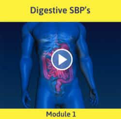Module 1 - Digestive DBP's